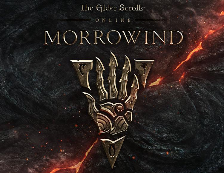 The Elder Scrolls Online: Morrowind (PC) фото