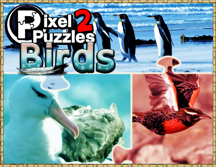 Pixel Puzzles 2 : Birds (PC) фото