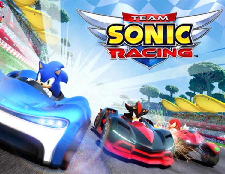 Team Sonic Racing (PC) фото